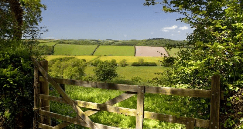 Photo of a field with a gate in the foreground