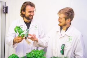 Two scientists with plants